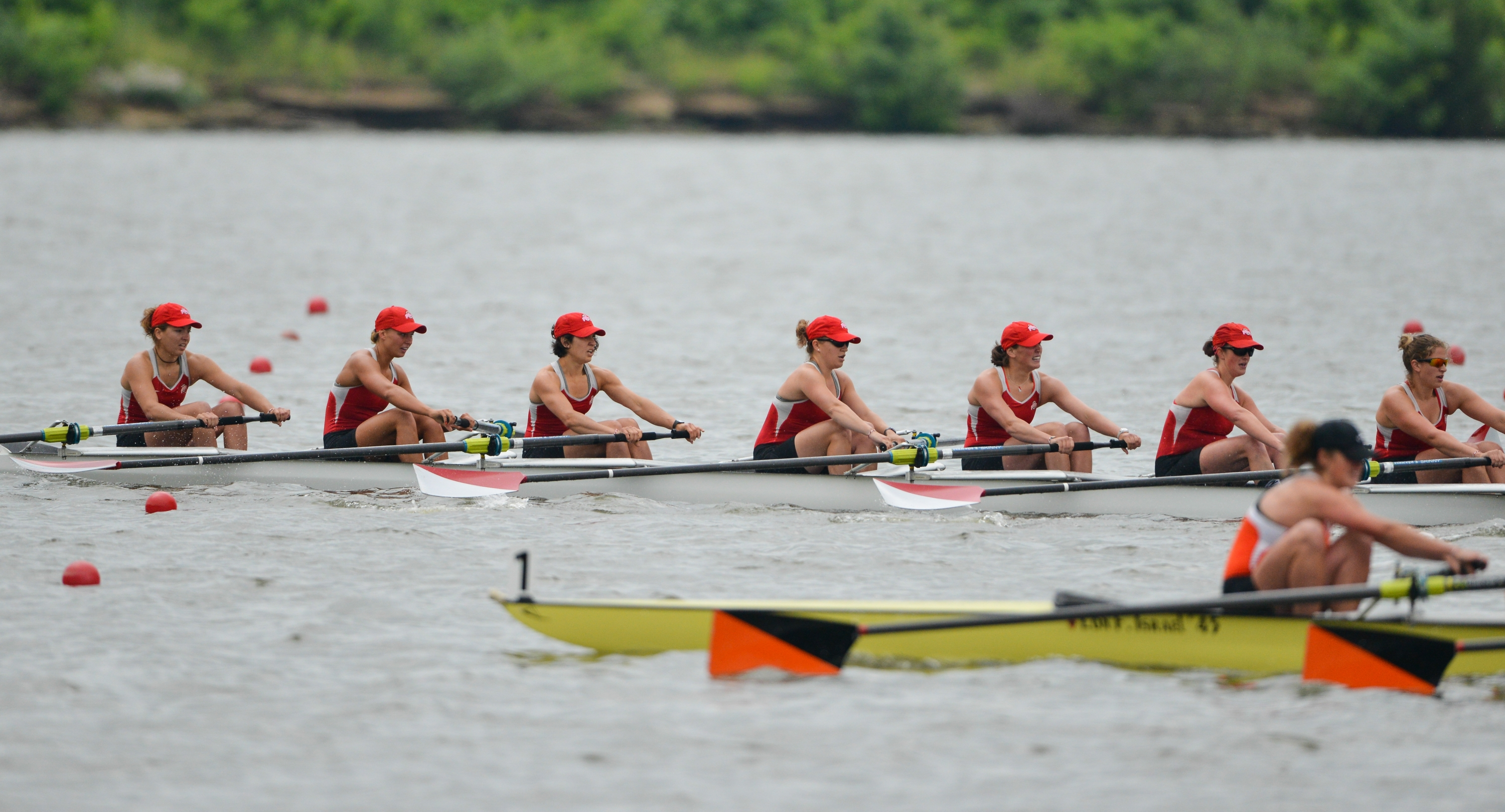 NCAA Rowing
