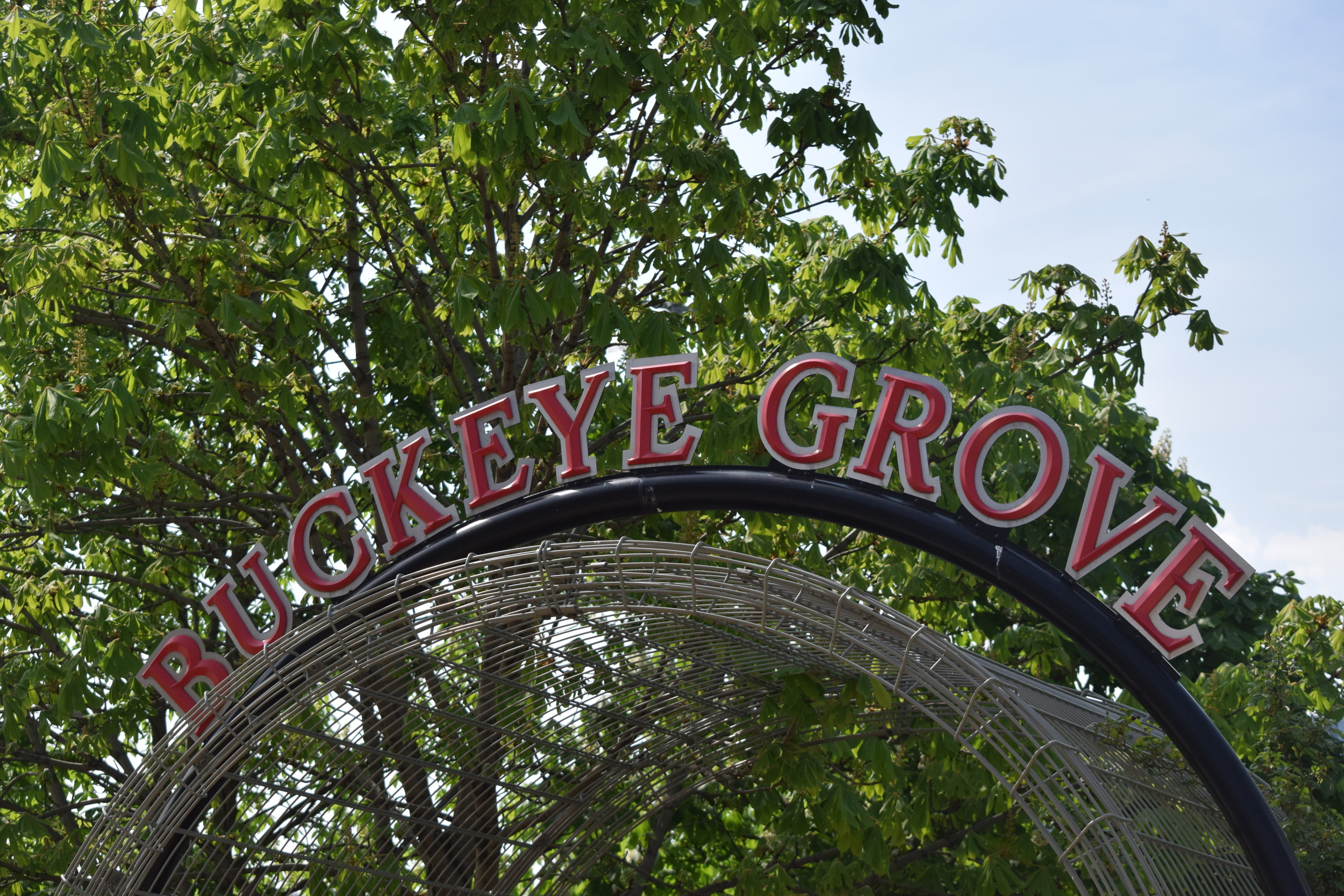 Buckeye Grove Landscaping Day