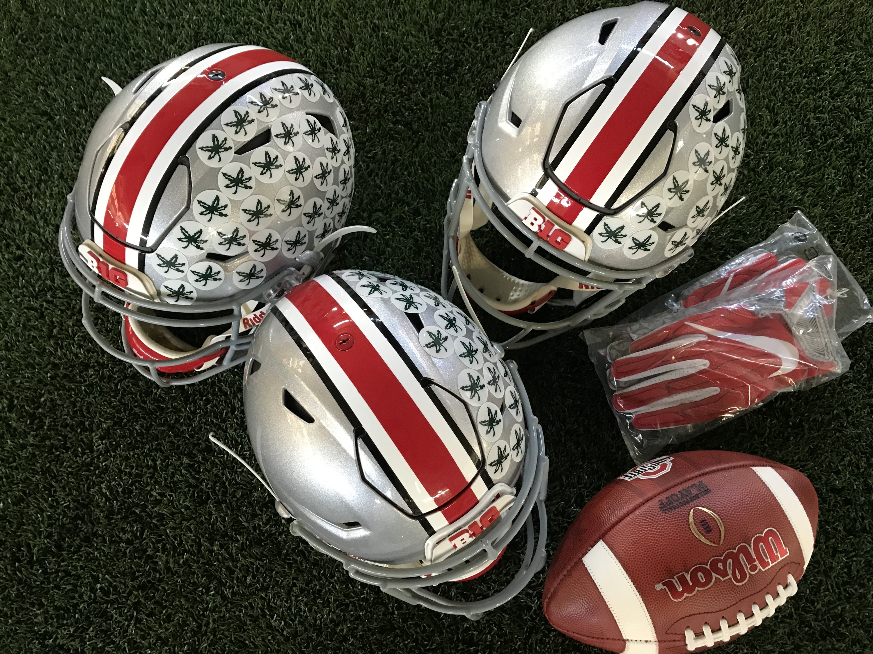 Ohio State Football Fall Focus